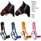 Bling/Diamante Padded Horse Nylon Head collar with Fur All Colours Full Cob