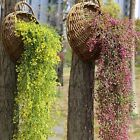 Home Garden - Artificial Fake Silk Flower Vine Hanging Garland Plant Home Garden Wedding Decor