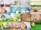 Vinyl Newborn Baby Easter Photography Backdrop Photo Studio backgrounds