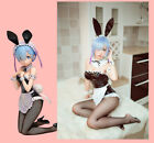 Re:Life in a different world from zero Rem cosplay costume dress female lingerie