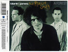 A Forest [3 Track Single] by Blank & Jones + Robert Smith of The Cure (CD, 2003)