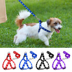 Step In Dog Harness & Leash Nylon Paw Print Pet Puppy Strap for French Bulldog