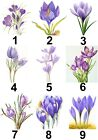 Crocus Flower Small or Large Sticky White Paper Stickers Labels NEW