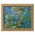 Almond Branches in Bloom, San Remy 1890, Canvas Wall Art by Vincent van Gogh -