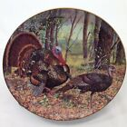 Turkey Trot Collector Plate Danbury Mint Beauty and the Feast Vtg