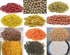 cook kidney beans - Pulses | Beans | Lentils for Indian cooking | Freshly packed | Whole Sale India