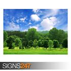 BEAUTIFUL SUMMER LANDSCAPE (AE057) NATURE POSTER - Poster Print Art A0 A1 A2 A3