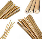 Strong Heavy Duty Professional Bamboo Plant Support Garden Canes | 3ft - 7ft