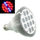 E27 36W Saving 12LED Practical Red Blue Plant Grow Light Hydroponic Bulb