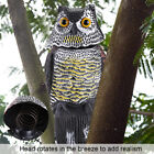 Realistic Owl Decoy Rotating Head Sound Repellent Pest Control Scarecrow Garden
