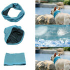 Pet Dog Cat Cooling Neck Scarf Collar Instant & Breathable for Outdoor Sport