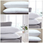 Pack of 2 Pillow Pair Hollow Fiber Comfortable Hotel Quality Super Bounce Pillow image