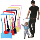 Baby Walking Belt Wing Safety Harness Toddler Wing Assistant Walk Infant Strap