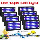 Dimmable 165W LED Aquarium Light Full Spectrum Reef Coral Tank Wholesale MA