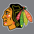 Chicago Blackhawks Vinyl Sticker / Decal *NHL* Western * Central * Hockey *IL* $10.00 USD on eBay