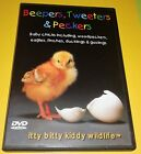 Beepers, Tweeters & Peckers (Mint Condition DVD) + With Free Shipping Fast
