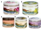Special from the dead sea C&B Minerals Body Butters All Scents 300ml Vanilla Lav