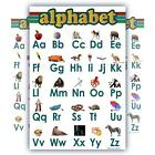 Learning Alphabet ABC Chart White Laminated Classroom Poster