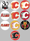 "Calgary Flames Set 10 Buttons or Magnets 1.25"" New $4.5 USD on eBay"