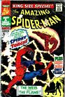 THE AMAZING SPIDER-MAN King-Size Special #4 Human Torch Marvel Comics -NO RESERV