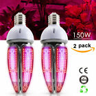 E40 Base Socket Plant Grow Light Lamp indoor Seeding Grow tents Greens Flower