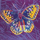 "26W""x26H"" SILVERSPOT BUTTERFLY BY ANDY WARHOL - ENDANGERED CHOICES of CANVAS"
