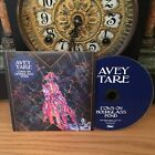 Avey Tare COWS ON HOURGLASS POND Domino Neofolk CD 2019 Promo Animal Collective