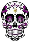 Minnesota Vikings Skull sublimation or color iron on transfer (choice of 1) $3.0 USD on eBay