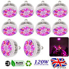 120W LED Grow Light Bulb E27 Full Spectrum Hydroponic Plants Growing Light Lamp