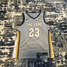"Lebron James ""The Land"" Jersey Cleveland Cavaliers NBA NWT on eBay"
