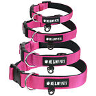 ME & MY PETS ADJUSTABLE DOG/PUPPY COLLAR CLASSIC LUXURY STRONG PINK PADDED NYLON