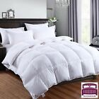LUXURY GOOSE FEATHER & DOWN DUVET QUILT BEDDING ALL SIZES GOLD PIPED 10.5 TOG