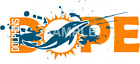 Miami Dolphins sublimation or lt color iron on transfer (choice of 1) $3.25 USD on eBay