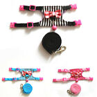 SMALL TINY PET MOUSE RAT GUINEA PIG BELL CLUNKCLICK HARNESS LEAD BLACK PINK BLUE