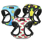 Breathable Nylon Harness for Small Dogs Mesh Step in Dog Vest & Printing Pattern