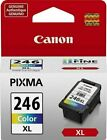 Canon PG-245 CL-246 Genuine Ink Cartridge for MX490 PIXMA TR4520,TR4522 MG2522
