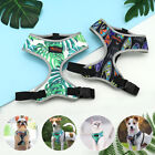 Breathable Nylon Dog Harness Reflecitve No Pull Dog Vest for Small Medium Dogs