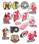Chicago-devils-Red wing-Flyers-Hurricanes Logos Patches-Iron- sewing Fabrics.