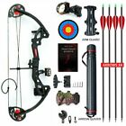 15-29lbs Compound Bow Kit W/4pcs Arrows&Target Right Hand Practice Quiver Tube