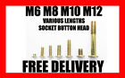 M6 M8 M10 M12 BOLT SOCKET BUTTON HEX ALLEN HEAD BOLTS GOLD ZINC x 10 20 50 100