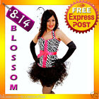G67 Ladies Pink Zebra BURLESQUE COSTUME Corset Hens Night MOULIN ROUGE Outfit