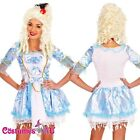 Ladies Blue Marie Antoinette Renaissance Masquerade Ball Costume Fancy Dress