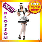 C164 Dark Alice in Wonderland Malice Gothic Halloween Fancy Dress Adult Costume