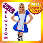 American McGee's Mad Dark Gothic Zombie Alice In Wonderland Halloween Costume