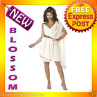 C147 Women's Deluxe Classic Toga Goddess Halloween Fancy Dress Adult Costume