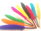 GOOSE QUILL FEATHERS - ARTS AND CRAFT HUGE VARIETY OF COLOURS SCRAPBOOK