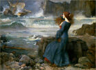 Poster / Leinwandbild Miranda - The Tempest - John William Waterhouse