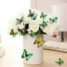 Colorful 12pcs Fridge Magnet 3D DIY Wall Sticker Butterfly Baby Room Home Decor