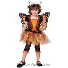CK264 Magnificent Monarch Butterfly Orange Fairy Girls Toddler Book Week Costume