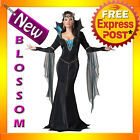 C799 Evil Sorceress Wicked Witch Womens Halloween Fancy Dress Up Costume